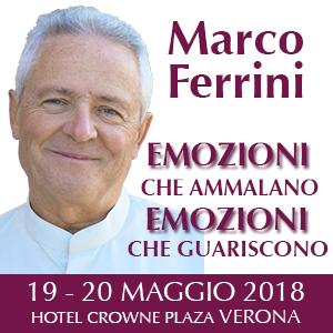 Seminario a Verona con marco Ferrini